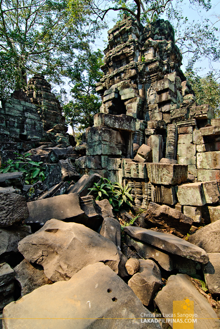 Ta Prohm Temple Ruins in Siem Reap
