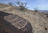 Petroglyph / Mesquite Spring Site