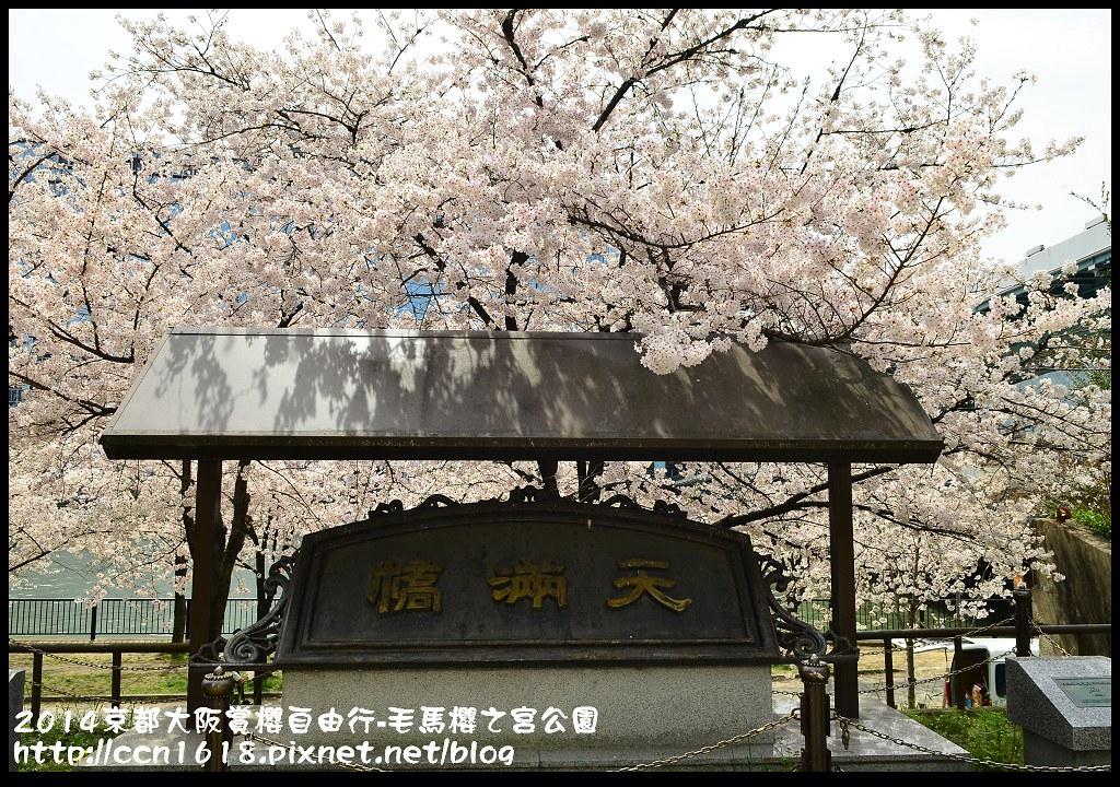 2014京都大阪賞櫻自由行-毛馬櫻之宮公園DSC_1924