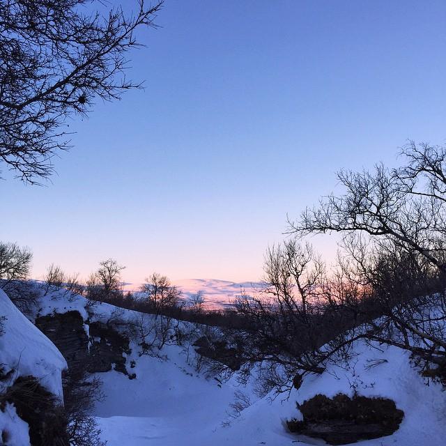 Alpenglow #WTDxWLP #visitsweden #björkliden