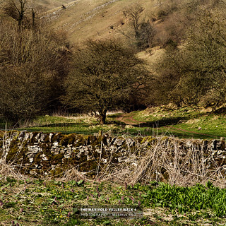 Walk in the Manifold Valley 4