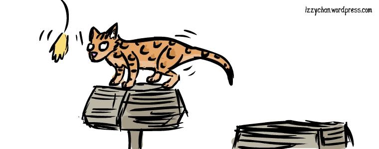 orange cat butt wiggle