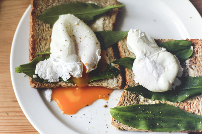 poached Egg on a Toast
