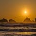 Bandon Beach Sunset With Cormorants by TJMORTON1