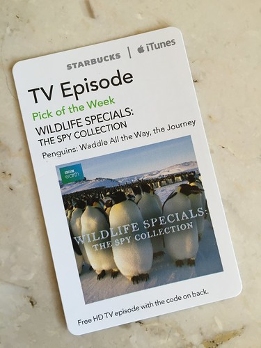 Starbucks iTunes Pick of the Week - Wildlife Specials: The Spy Collection