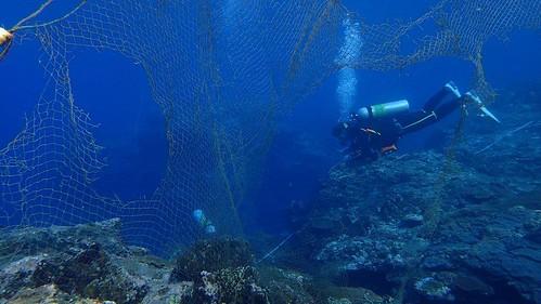 郎島港外的廢棄漁網