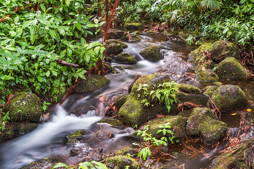 The Babbling Brook by Geoff Livingston