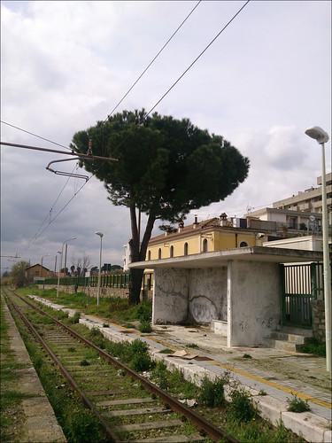 Scanzano Jonico-Montalbano Jonico (01)