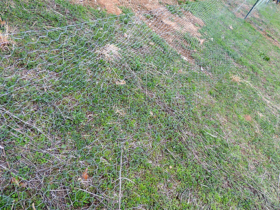 deer-fence-25