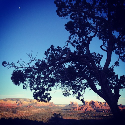 Well it's totally fucking gorgeous here. Much better in person. 😍 #Sedona