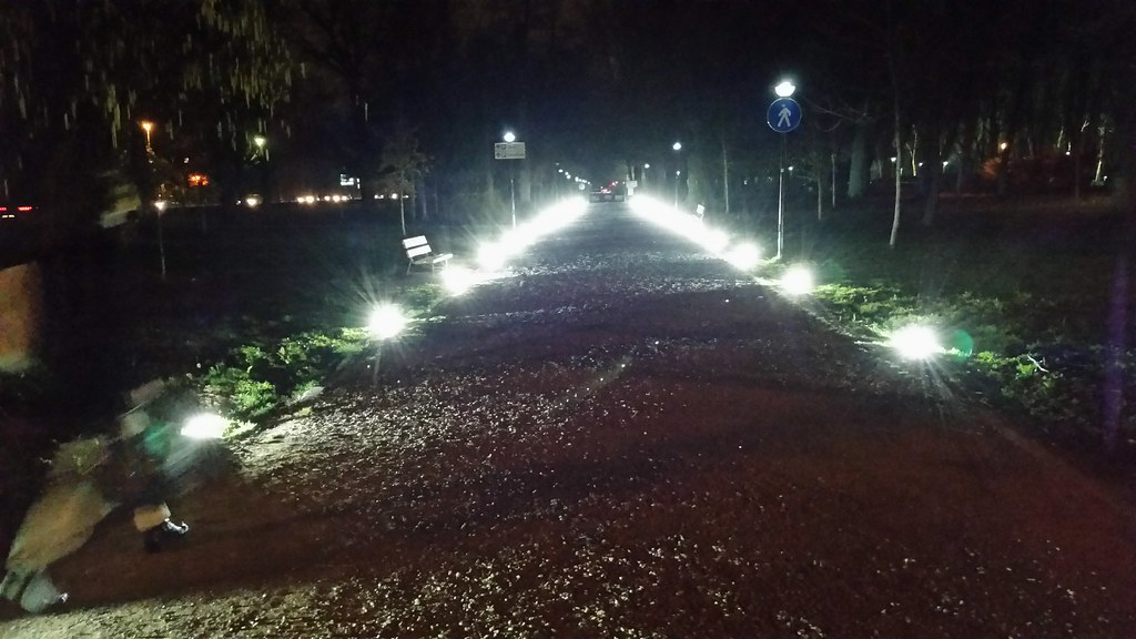 A Lighted Path