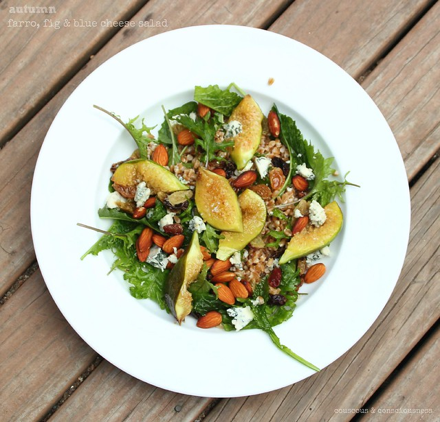 Autumnal Farro, Fig & Blue Cheese Salad 2