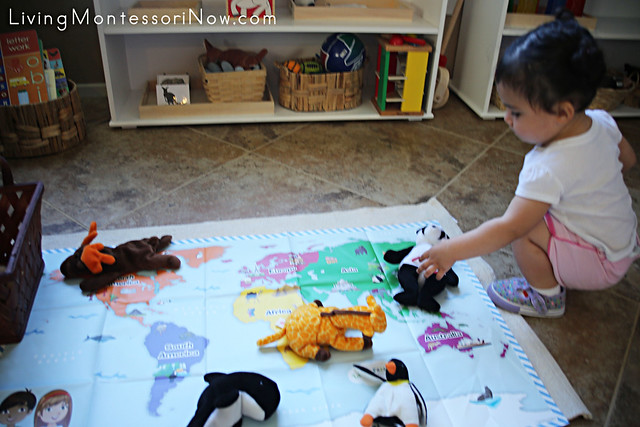Matching Animals to Little Passports Early Explorers Map