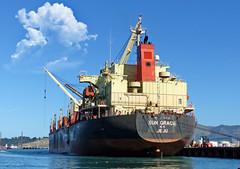 Shipping Merchant