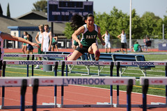 sprint, athletics, track and field athletics, endurance sports, 110 metres hurdles, championship, obstacle race, 100 metres hurdles, sports, running, hurdle, heptathlon, person, hurdling, athlete,