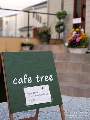cafe tree 20150429-DSCF1390