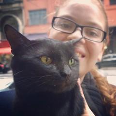 """Peguei minha gata no flagra com um gato..  Esse é o Boris, """"gato de rua"""" que recebe cuidado dos lojistas na região da Santa Ifigênia e estava visitando um sebo aonde estávamos. Claro que virou a atração do lugar.. :heart:"""