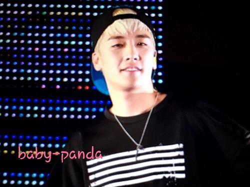 Big Bang - Made Tour - Tokyo - 13nov2015 - Baby Panda - 12