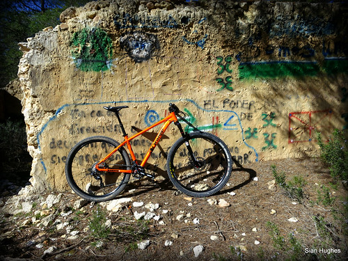 Orange Clockwork 29er (2)