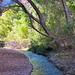 Aravaipa Creek by Al_HikesAZ
