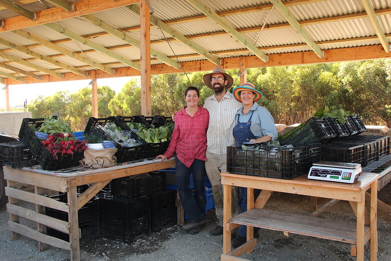 Ellie, Lucy and Nat launch Village Greens at Aldinga Eco Village