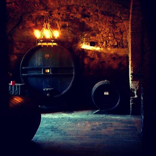Montepulciano: una cantina vinicola
