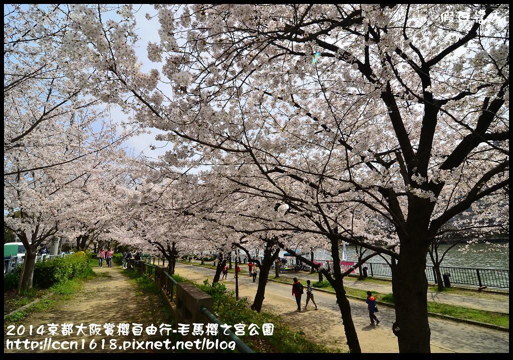2014京都大阪賞櫻自由行-毛馬櫻之宮公園DSC_1930