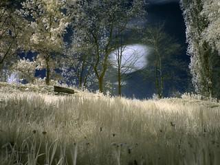 Infrarotfotografie Landschaft