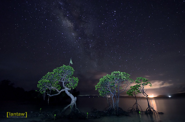 Starry starry night at Cagbalete Island