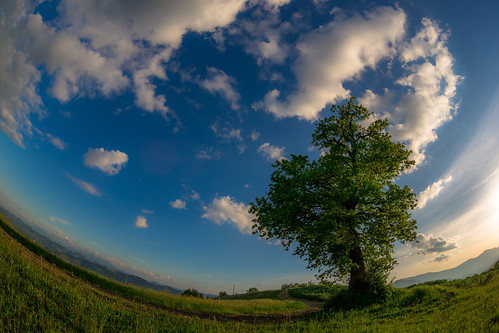 sky tree nature clouds canon landscape spring italia fisheye zenitar 6d montefeltro
