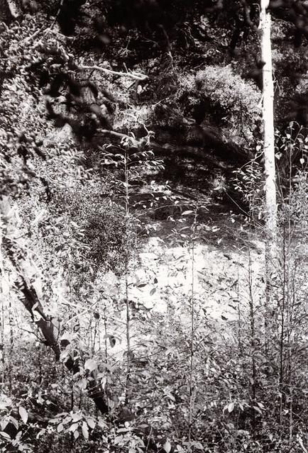 Voskhod Gabrielino Trail 3