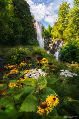 kassel bergpark wilhelmshöhe wasserspiele aquädukt unesco deutschland nordhessen hessen germany nature flowers sony a7rm2