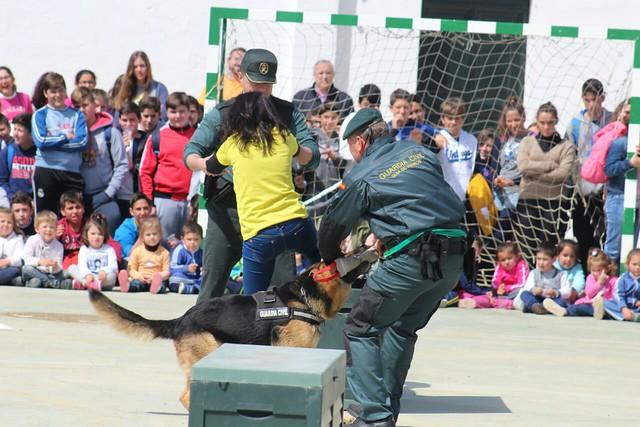 AionSur 16298788044_1e54d085df_z_d 7 destacamentos de la Guardia Civil que trabajan en la comarca por la seguridad de la población Educación Guardia Civil en colegios