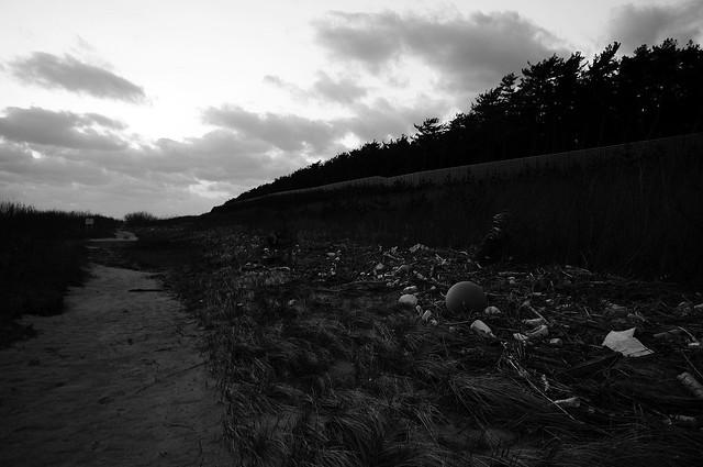 赤川汽水域