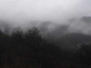 Nachts in  den Alpen huscht es geisterhaft durch den Nebel 0047_1