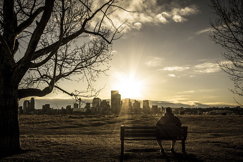 city sunset man calgary bench landscape person view scenic mansittingonabench