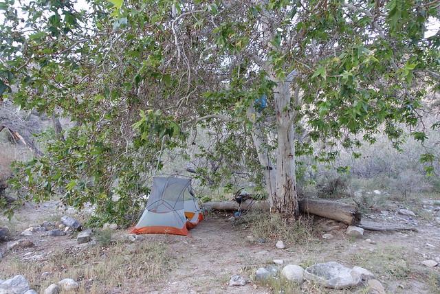 Campsite, m226