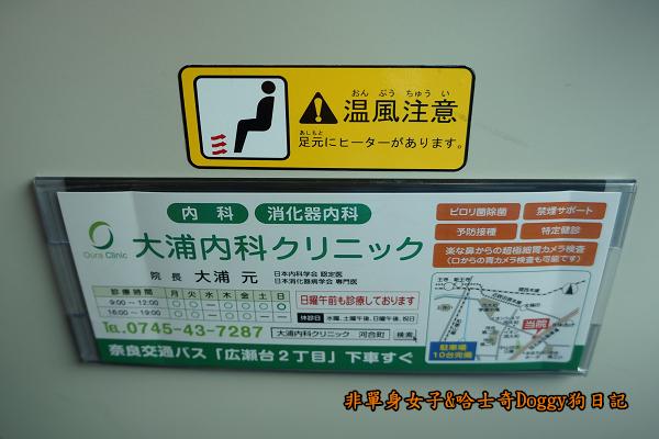 日本奈良公園東大寺08