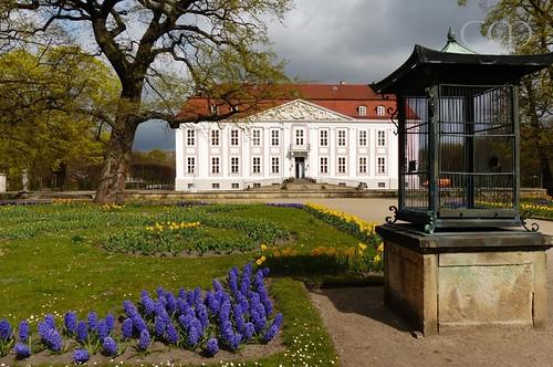 Castle Friedrichsfelde...