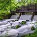 Silky Rapids