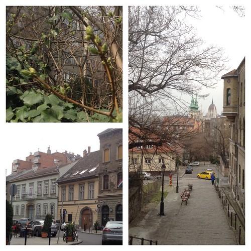 А я сбежала от зимы!))) #будапешт
