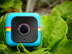 Polaroid CUBE salátán