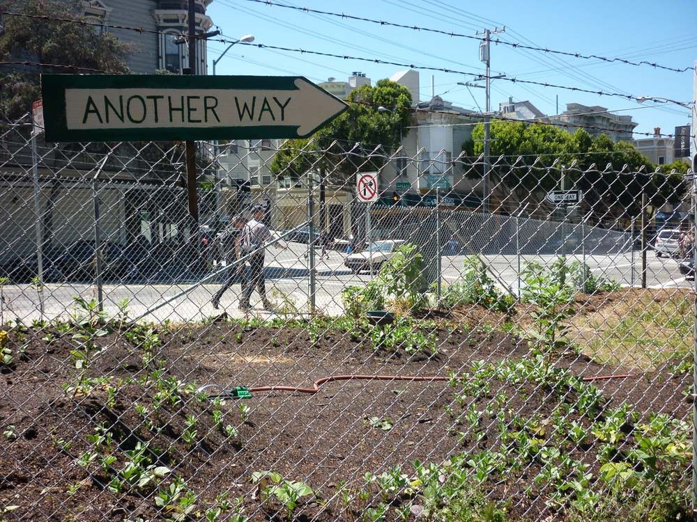 hayes-valley-farm09