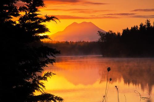 trees light sun water silhouette fog sunrise canon landscape washingtonstate tamron mtrainier pnw lawrencelake t4i 1riverat matthewreichel