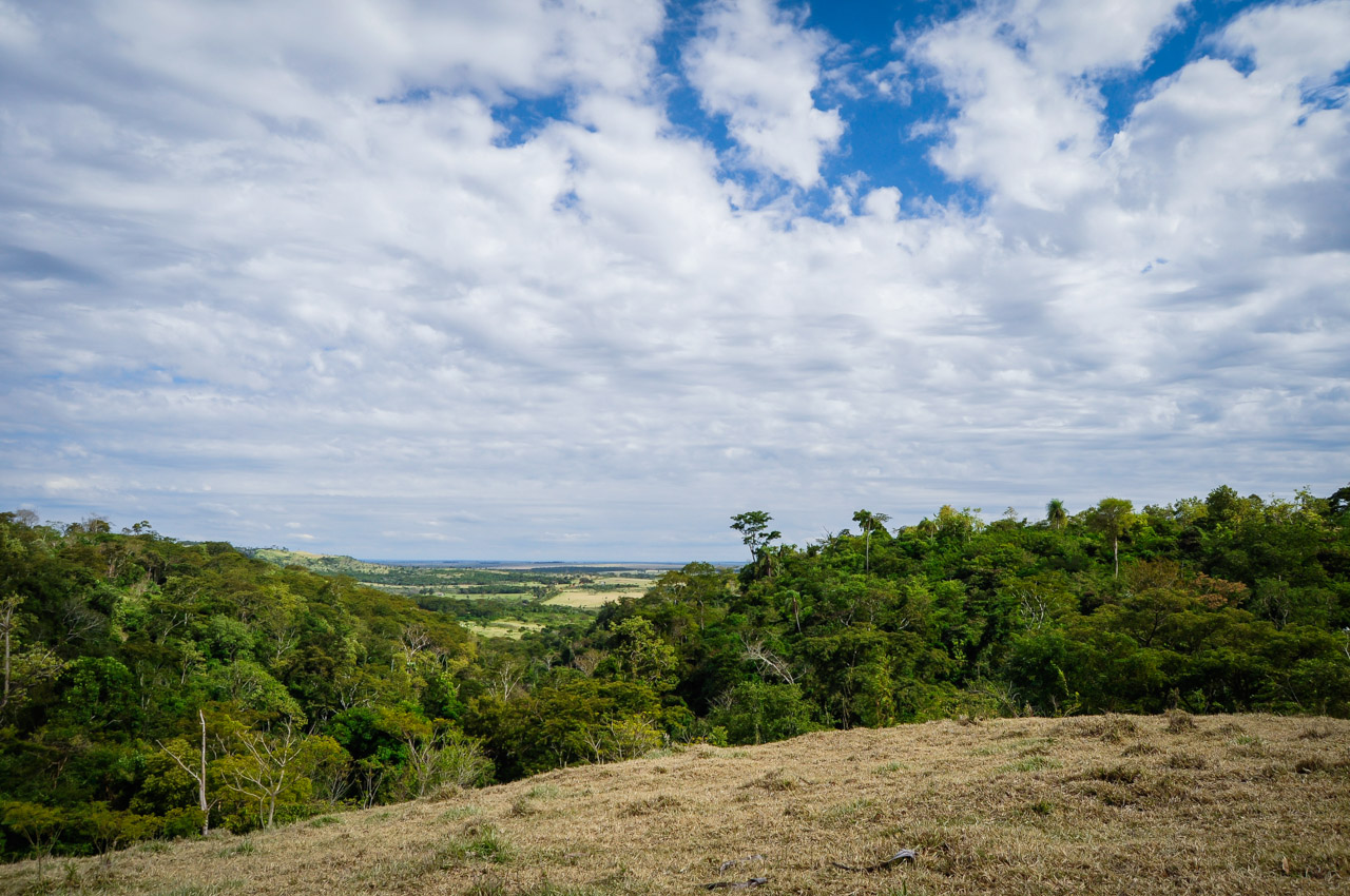 Vista del ecosistema de bosques desde las alturas de las cordilleras del Mbaracayú, entre bosques densos y parcelas de cultivos de repente pueden verse viviendas aisladas. (Elton Núñez)
