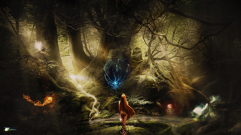 Magical Forest - Diaphragm Pictures