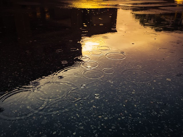 Photo:Rain Drops By:Brian DePalo