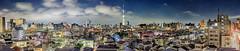 Tokyo Panorama 3491