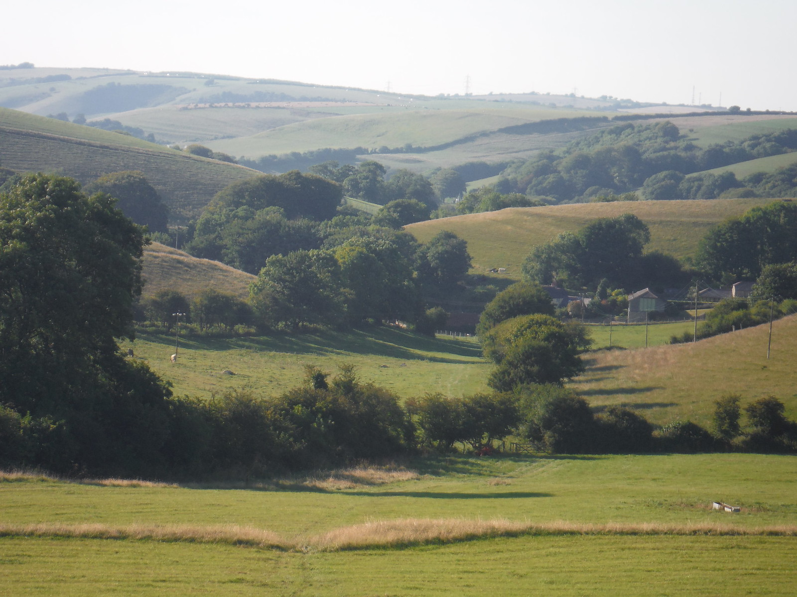 Valley of Stones and Littlebredy Farm SWC Walk 275 Dorchester South Circular or to Portesham (Extension)