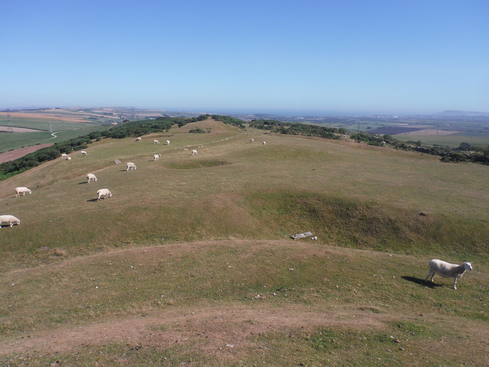 Bronkham Hill Ridge from Top of Barrow SWC Walk 275 Dorchester South Circular or to Portesham